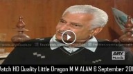 Little Dragon M M ALAM 6 September 2015
